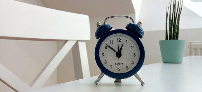 An alarm clock and a plant on a desk