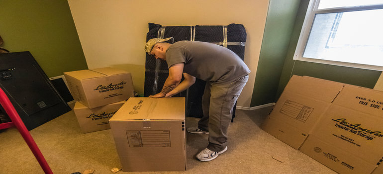 Professional packer is packing boxes for the move