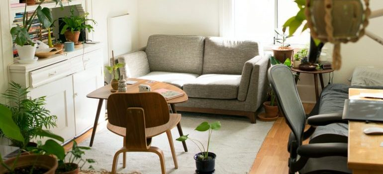 Let professional apartment movers Denver help you with your relocation