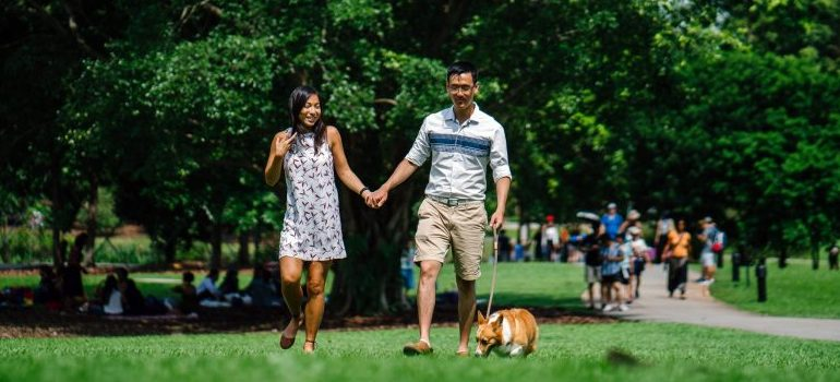 couple-in-the-park-with-a-dog