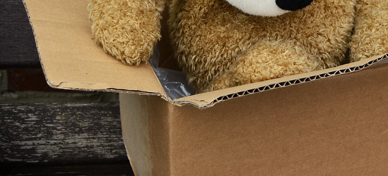 a teddy bear in a box as a way to reuse your moving boxes