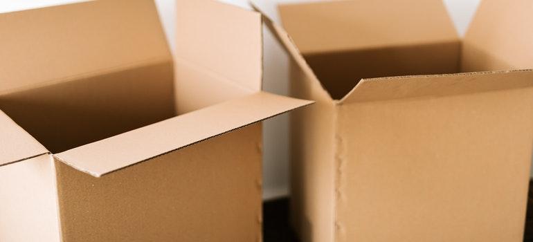 Two open carton boxes